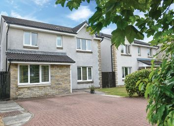 Thumbnail 4 bed detached house for sale in Moubray Gardens, Cambus, Alloa