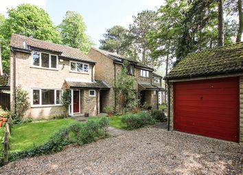 Thumbnail 3 bedroom detached house for sale in Centre Drive, Newmarket