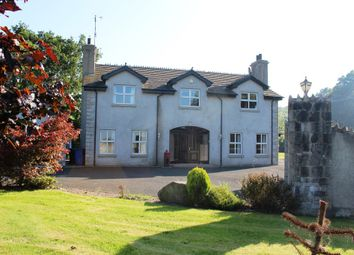 Thumbnail 5 bed detached house for sale in Glen Road, Newry