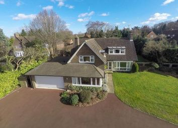 Thumbnail 4 bed detached house for sale in Epsom, Surrey, England