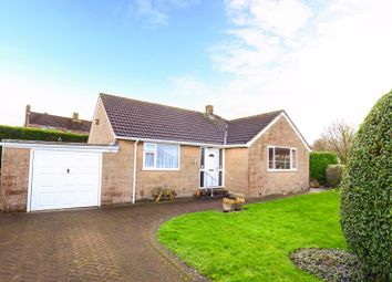 Thumbnail 3 bed detached bungalow for sale in Witch Close, East Stour