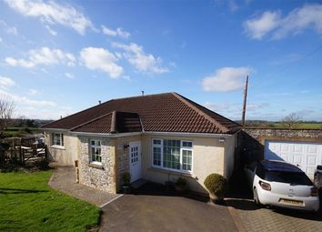 Thumbnail 5 bed detached bungalow for sale in Clapton, Radstock
