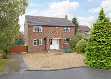 Thumbnail 4 bed detached house for sale in Westlands, Bilton-In-Ainsty, York