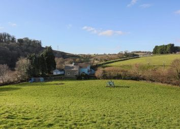 Thumbnail 4 bed detached house for sale in Horningtops, Liskeard, Cornwall