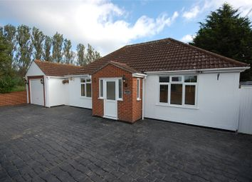 Thumbnail 4 bed detached bungalow for sale in Main Road, Woodham Ferrers, Chelmsford, Essex
