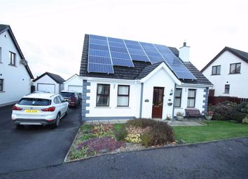 Thumbnail 4 bed detached house to rent in Hawthorn Hill, Dromara, Dromore