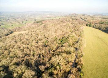 Thumbnail Land for sale in Wincombe Lane, Semley, Shaftesbury, Wiltshire