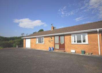 Thumbnail 3 bed detached bungalow to rent in Banc-Y-Darren, Aberystwyth