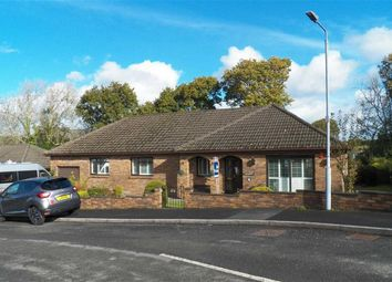 Thumbnail 4 bed detached bungalow for sale in Maesglasnant, Cwmffrwd, Carmarthen