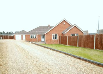 Thumbnail 4 bed bungalow to rent in Hilda Brookes Way, New Costessey, Norwich
