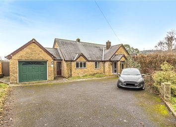 Thumbnail 3 bed detached bungalow for sale in Dalwood, Axminster, Devon