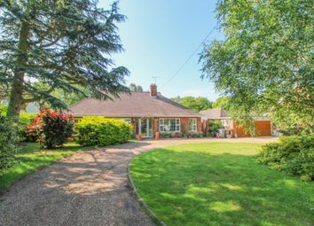 Thumbnail 4 bed detached bungalow for sale in Playford Road, Little Bealings, Woodbridge