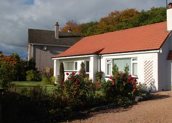 Thumbnail 4 bed detached bungalow for sale in Coralbank, Blairgowrie