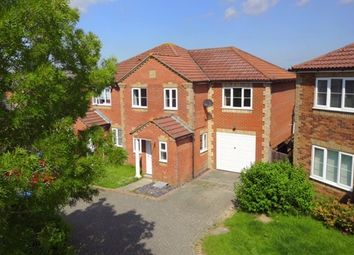 Thumbnail 4 bed semi-detached house to rent in Woodpecker Crescent, Burgess Hill