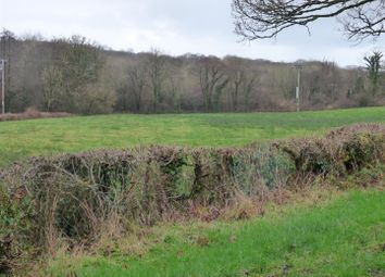 Thumbnail Land for sale in Capel Dewi, Carmarthen