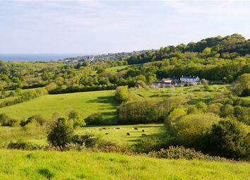 Thumbnail 6 bed equestrian property for sale in Harcombe, Lyme Regis, Dorset