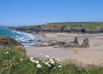 Thumbnail 4 bedroom bungalow for sale in Porthcothan Bay, Padstow