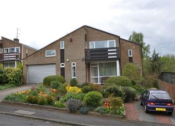 Thumbnail 4 bed detached house to rent in Elvaston Grove, Hexham, Northumberland.