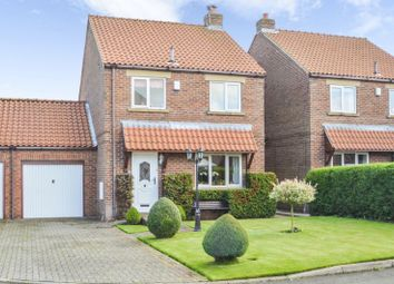 Thumbnail 3 bed detached house for sale in Sycamore Grove, Sherburn, Malton