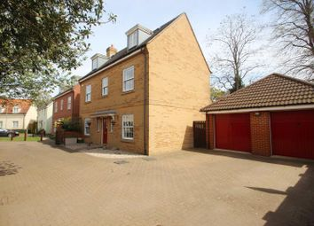 Thumbnail 5 bed detached house to rent in Whitebeam Close, Colchester, Essex
