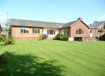 Thumbnail 4 bed bungalow to rent in St Georges Crescent, Stanwix, Carlisle
