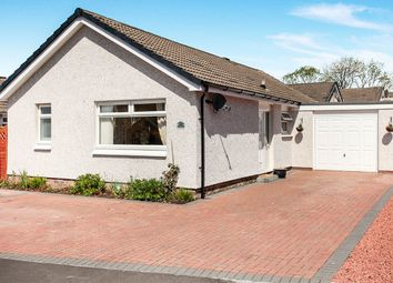Thumbnail 2 bed bungalow for sale in Mosspark Avenue, Dumfries