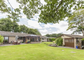 Thumbnail 4 bed detached bungalow for sale in The Sycamores, Hall Drive, Sutton Scarsdale