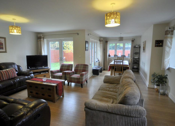 Thumbnail 4 bed detached house to rent in Oakley Gardens, Maidenhead