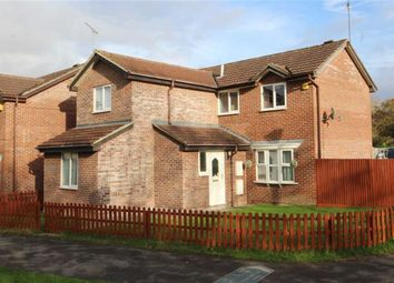 Thumbnail 4 bedroom detached house for sale in Friesian Close, Ramleaze, Swindon