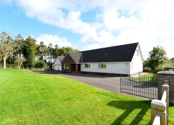 Thumbnail 4 bed bungalow for sale in Station Road, Saintfield, Ballynahinch