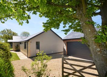 Thumbnail 2 bed detached bungalow for sale in Green Lane, Stour Row, Shaftesbury