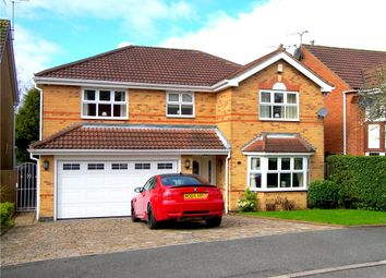 Thumbnail 4 bedroom detached house for sale in Newlyn Drive, South Normanton, Alfreton