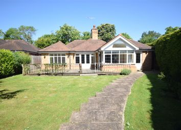 Thumbnail 4 bed detached bungalow to rent in Harriotts Lane, Ashtead