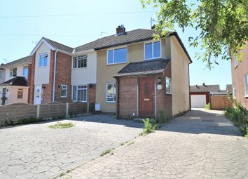 Thumbnail 4 bed semi-detached house to rent in Broomfield Crescent, Colchester, Essex