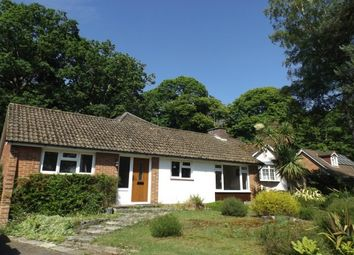 Thumbnail 4 bed detached bungalow to rent in Gordon Road, Chandler's Ford, Eastleigh