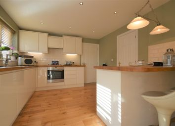 Thumbnail 4 bed detached house for sale in Marsh View, Gravesend
