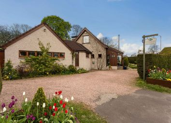Thumbnail Hotel/guest house for sale in 79 Muirs, Kinross