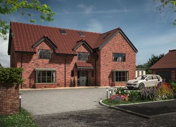 Thumbnail 5 bed detached house for sale in Aislaby Lodge, Aislaby