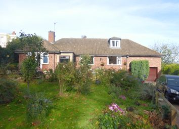 Thumbnail 4 bed property for sale in Ledbury Road, Hereford