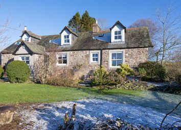 Thumbnail 4 bed cottage for sale in Abernyte, Abernyte Perth, Perthshire