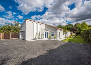 Thumbnail 4 bed detached bungalow for sale in Heath Road, Polstead, Colchester
