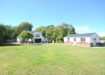 Thumbnail 5 bed detached bungalow for sale in Dudmoor Farm Road, Christchurch