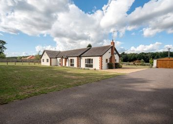 Thumbnail 4 bed detached bungalow for sale in Methwold Road, Cranwich, Thetford, Norfolk