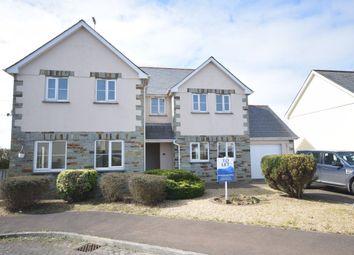 Thumbnail 3 bed property to rent in Goaman Park, Hartland, Bideford