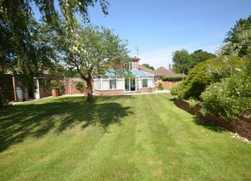 Thumbnail 4 bedroom detached bungalow for sale in Linersh Drive, Bramley, Guildford
