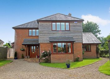 Thumbnail 4 bed detached house for sale in Kingston, Sturminster Newton, Dorset