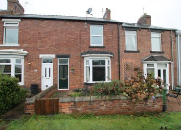 Thumbnail 2 bed terraced house for sale in Cumberland Terrace, Willington, Crook