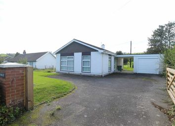 Thumbnail 3 bed detached bungalow for sale in Penrhyncoch, Aberystwyth
