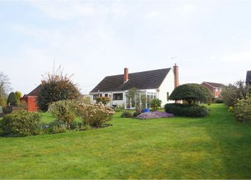 Thumbnail 3 bed detached bungalow for sale in Victoria Road, Warminster