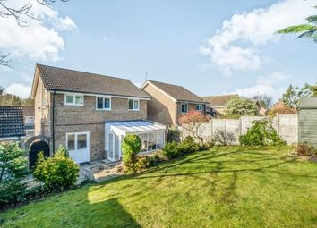 Thumbnail 4 bed detached house for sale in Bungay, Suffolk